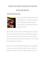 Tài liệu NHỮNG CÂU CHUYỆN SONG NGỮ ANH-VIỆT DÀNH CHO TRẺ EM 11 docx