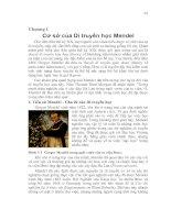 Tài liệu Chương 1:Cơ sở của Di truyền học Mendel docx
