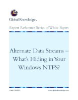 Tài liệu Alternate Data Streams – What's Hiding in Your Windows NTFS? pdf
