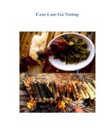 Tài liệu Cơm Lam Gà Nướng pdf
