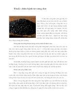 Tài liệu Thuốc chữa bệnh từ vừng đen pdf