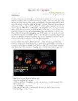 Tài liệu Tìm hiểu về tế bào gốc pdf