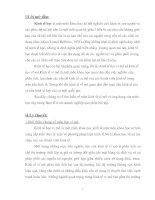 Tài liệu Bài tập kinh tế vi mô và ứng dụng của môn học này trong thực tế ở các doanh nghiệp pdf
