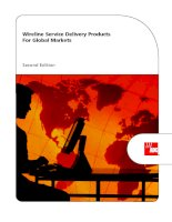Tài liệu Wireline Service Delivery Products For Global Markets pptx