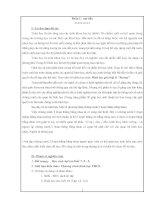 Tài liệu SKKN Toán hình THCS