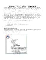 Bài soạn Tạo mục lục tự động trong word