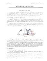 Tài liệu Giáo trình trắc địa - Phần 2 ppt