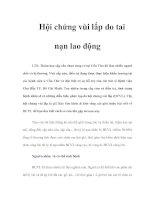 Tài liệu Hội chứng vùi lấp do tai nạn lao động pdf