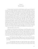 Tài liệu Giáo trình về Văn hóa kinh doanh quốc tế Chương 14 docx