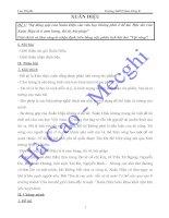 Bài giảng Vôi vàng- Xuân Diệu_ luyện đề