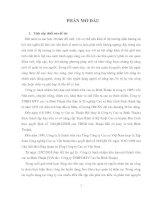 GIẢI PHÁP HÒAN THIỆN CÔNG tác TUYỂN DỤNG NHÂN sự tại CÔNG TY TNHH MTV CAO SU BÌNH THUẬN