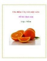 Tài liệu Chủ điểm: Cây trái miệt vườn - Đề tài: Quả cam Lớp : Mầm pdf