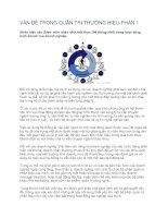 Tài liệu VẤN ĐỀ TRONG QUẢN TRỊ THƯƠNG HIỆU-PHẦN 1 ppt