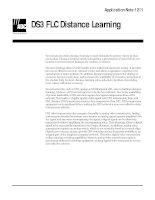 Tài liệu DS3 FLC Distance Learning pdf