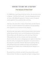 Tài liệu LUYỆN ĐỌC TIẾNG ANH QUA TÁC PHẨM VĂN HỌC-SHORT STORY BY O'HENRY- The Ransom Of Red Chief pdf
