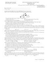 ĐỀ THI THỬ ĐẠI HỌC LẦN THỨ NHẤT  Năm học 2012 - 2013 MÔN SINH HỌC TRƯỜNG THPT CHUYÊN NGUYỄN HUỆ - HÀ ĐÔNG