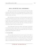 Tài liệu Giáo trình Excel - Bài 5: CƠ SỞ DỮ LIỆU ( DATABASE ) docx