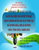 Slide ĐÁNH GIÁ HIỆU QUẢ KINH tế HOẠT ĐỘNG TRỒNG RỪNG sản XUẤT WB3 tại xã DƯƠNG hòa, THỊ xã HƯƠNG THỦY, TỈNH THỪA THIÊN HUẾ