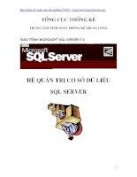 Tài liệu Giáo trình Microsoft SQL Server: Hệ quản trị cơ sở dữ liệu ppt