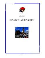 Tài liệu Sáng Kiến Kinh Nghiệm - Trần Hồng Việt Linh (Năm học: 2009 – 2010) pdf
