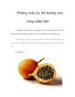 Tài liệu Những trái cây bổ dưỡng của vùng nhiệt đới pdf