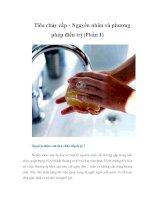 Tài liệu Tiêu chảy cấp - Nguyên nhân và phương pháp điều trị (Phần 1) docx