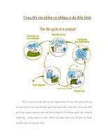 Tài liệu Vòng đời sản phẩm và những ví dụ điển hình doc