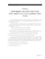 Tài liệu Phương án chống sét cho nhà máy cát lái castrol Việt Nam pdf