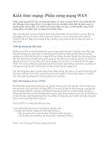 Tài liệu Kiến thức mạng: Phần cứng mạng WAN docx