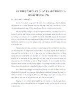 Tài liệu KỸ THUẬT NUÔI VÀ QUẢN LÝ SỨC KHOẺ CÁ BỐNG TƯỢNG (P2) IV. THỰC HIỆN CHĂM pptx