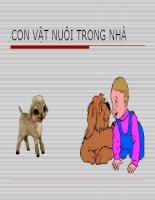 Bài soạn Con vật nuôi trong nhà