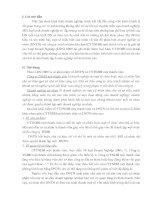 So sánh doanh nghiệp tư nhân và công ty TNHH một thành viên ( 9 điểm )