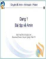 Tài liệu Các dạng bài tập về amin pptx