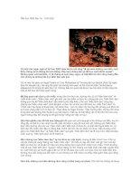 Tài liệu Bài học lãnh đạo từ... loài kiến ppt