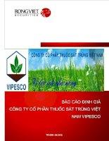 Báo cáo định giá công ty cổ phần thuốc sát trùng Việt Nam