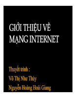 Tài liệu Thuyết trình: Giới thiệu về mạng Internet pptx