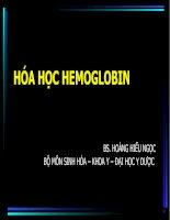 Tài liệu HEMOGLOBIN 2008 pdf