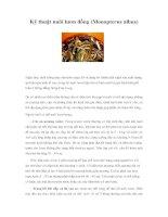Tài liệu Kỹ thuật nuôi lươn đồng (Monopterus albus) pdf