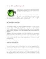Tài liệu Bài học chiến lược đại dương xanh pdf