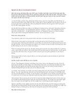 Tài liệu Nguyên tắc đầu tư của Benjamin Graham doc