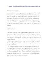 Tài liệu Yên Bái: kinh nghiệm chủ động chống nóng cho gia súc, gia cầm pptx
