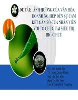 Slide ẢNH HƯỞNG của văn hóa DOANH NGHIỆP đến sự CAM kết gắn bó của NHÂN VIÊN với tổ CHỨC tại SIÊU THỊ BIG c HUẾ