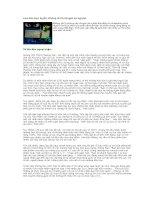 Tài liệu Lừa đảo trực tuyến: Không chỉ là chuyện xứ người! pdf