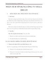 Phân tích tín dụng công ty small dream