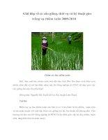 Tài liệu Giải đáp về cơ cấu giống, thời vụ và kỹ thuật gieo trồng vụ chiêm xuân 2009-2010 doc