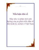 Tài liệu Tiểu luận dân số: Hãy nêu và phân tích ảnh hưởng của sự phát triển dân số đến kinh tế, xã hội ở Việt Nam docx