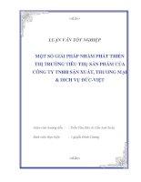 """Tài liệu Luận văn tốt nghiệp """"Một số giải pháp nhằm phát triển thị trường tiêu thụ sản phẩm của công ty TNHH sản xuất, thương mại & dich vụ Đức-Việt"""" ppt"""