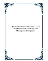 Tài liệu Tips and tricks gleaned from UGA's Foundations of Leadership and Management Program doc