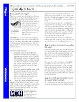 Tài liệu Bệnh dịch hạch pdf