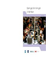 Tài liệu Viet Nam: Country Gender Assessment December 2006 ppt